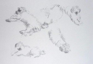 Bodor Z.: Bundás (ceruza, papír)