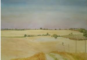 Bodor Z.: Tarló a Crete Senese-ben (akvarell, papír, 48x68 cm)